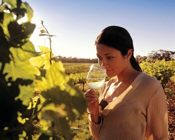 Winery Barossa Valley