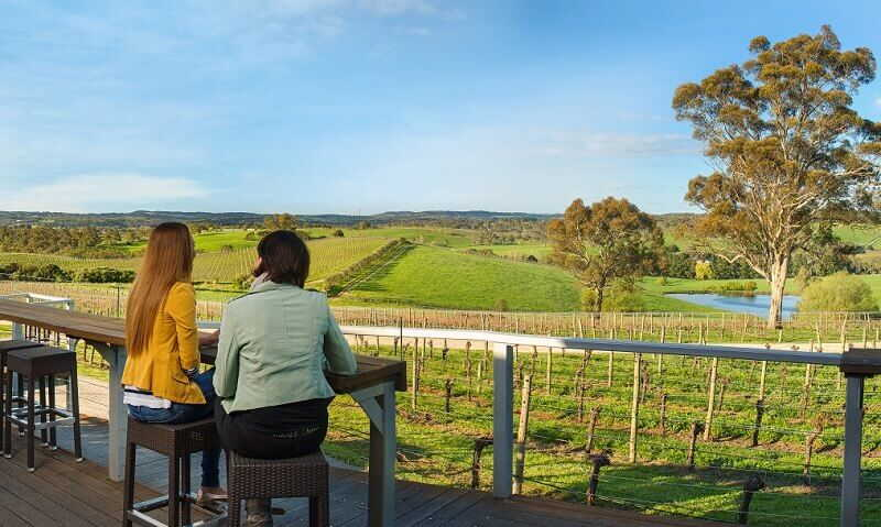 the barossa valley winery view