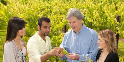 Wine and Food Lover's Barossa Valley Tour $149